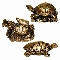 Turtle Polystone set of 12